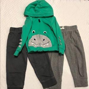 Dinosaur Zipper Hoodie and Pants Set